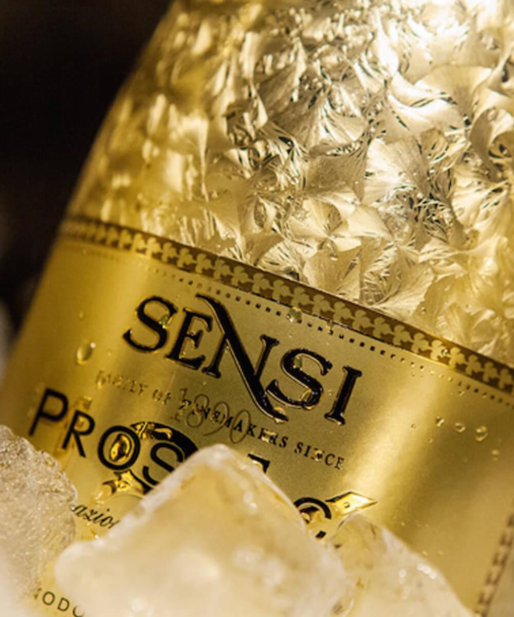 Sensi Today newsletter 13
